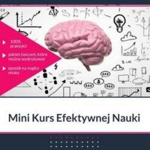 kurs efektywnej nauki minikurs